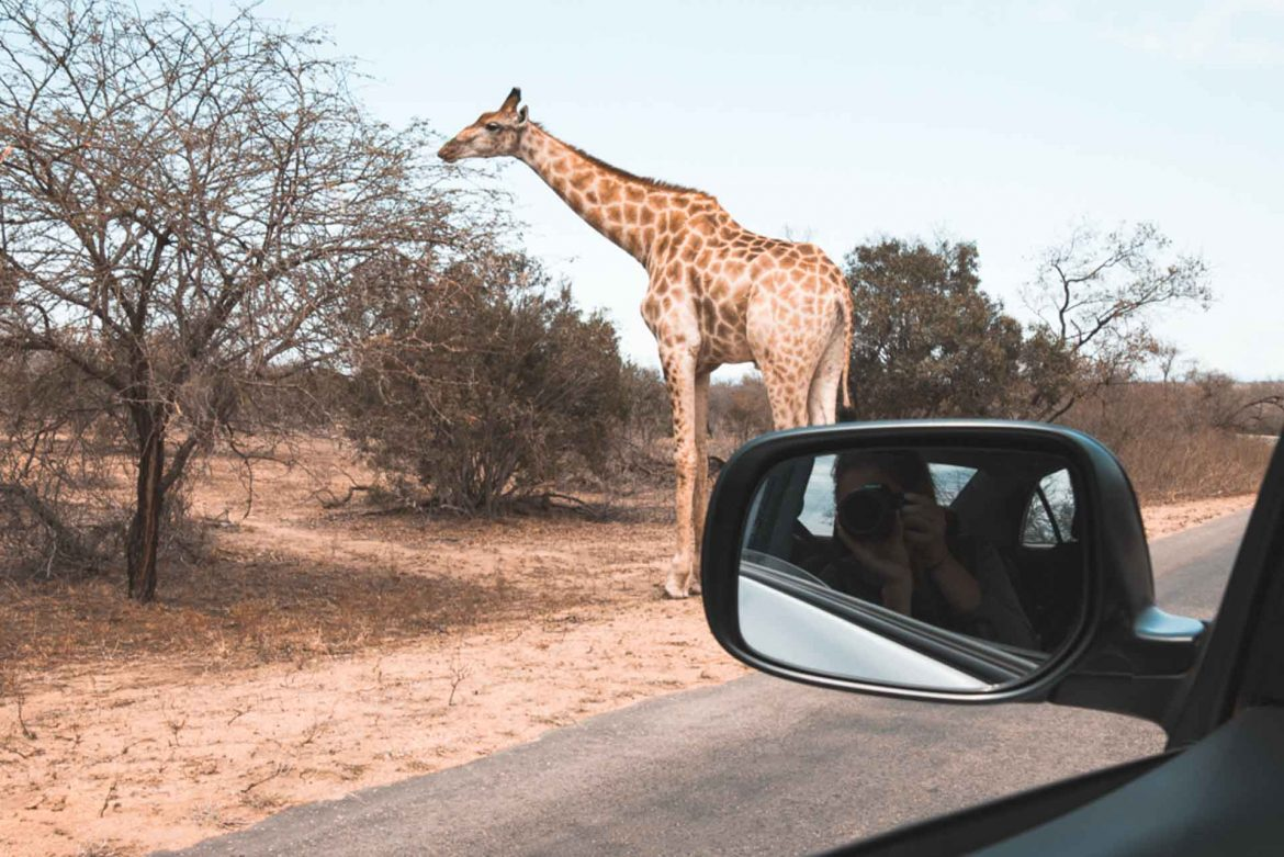 South Africa in 3 weeks: The ultimate road trip itinerary