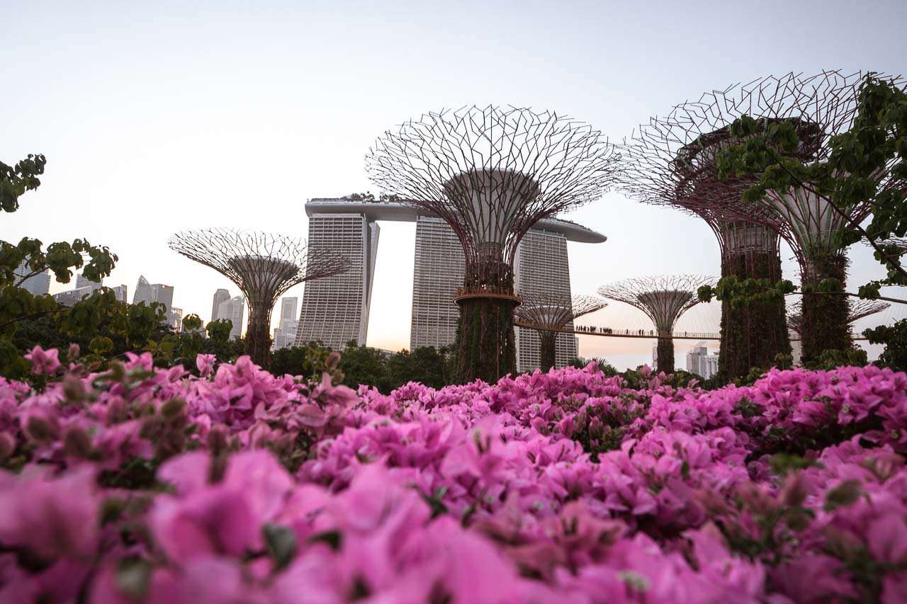 Singapore best time to visit